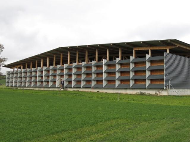 Die Halle aus Blech und Holz.
