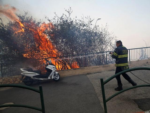 Ein Feuerwehrmann bekämpft die Flammen.