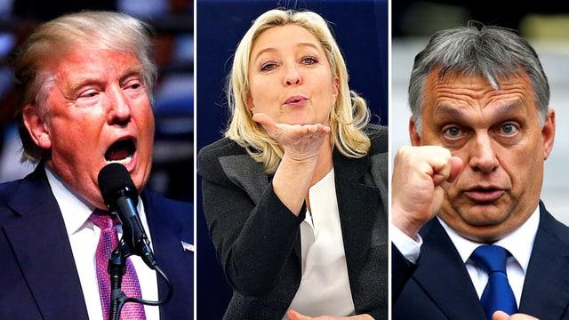 Collage mit Marine Le Pen, Victor Orban und Donald Trump.