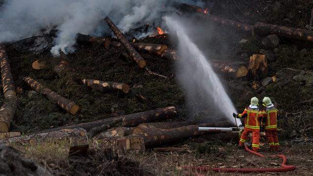 Feuerwehrmänner löschen brennendes Holz.