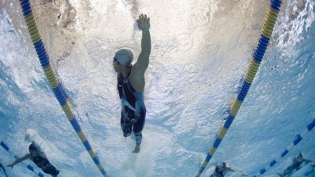 Hallenbad mit drei Schwimmern.