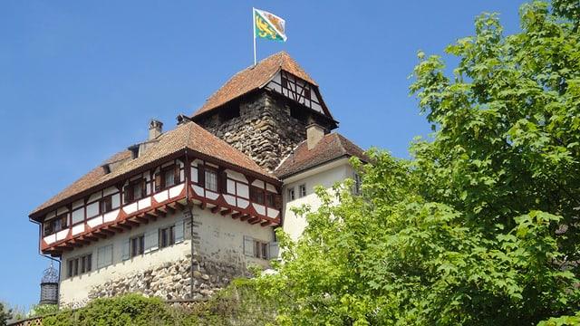 Das Schloss Frauenfeld umgeben von grün.