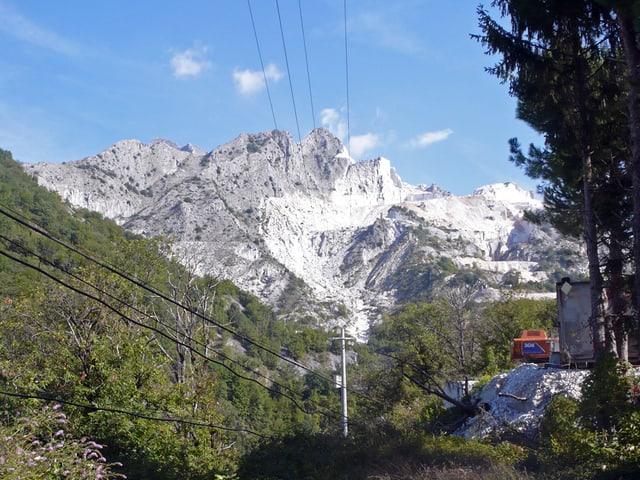 Blick auf einen bewaldeten Hang und dahinter die Berge mit weiss leuchtenden Flanken.