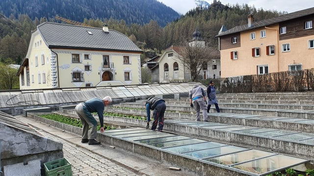 Impressiun da la giardinaria Müller a Susch.