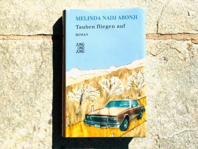 Der Roman «Tauben fliegen auf» von Melinda Nadj Abonji liegt auf einer Steinplatte