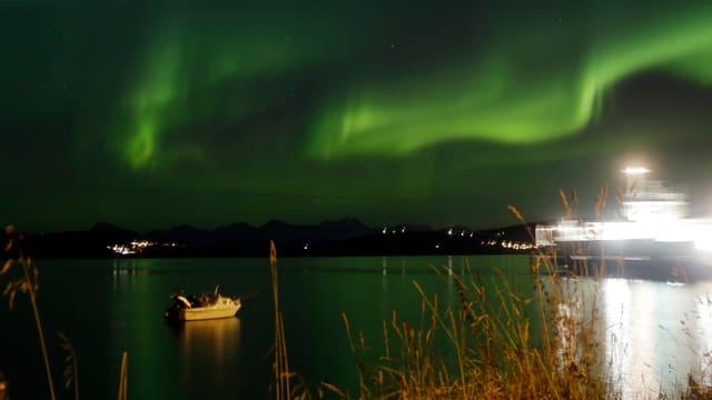 Ein grünes Nordlicht.