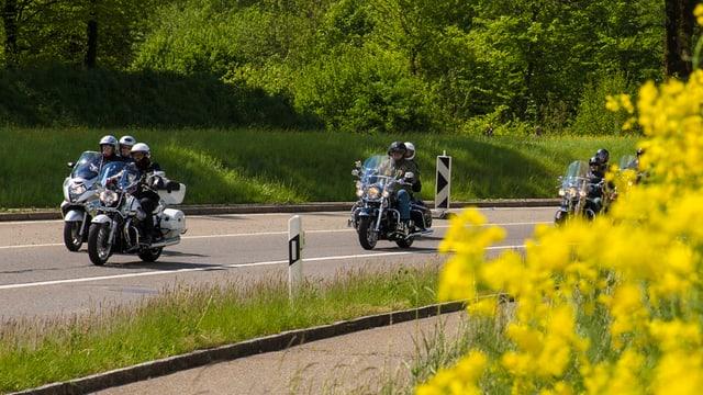 Mehrere Motorräder fahren auf einer Strasse