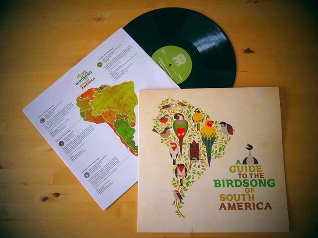 Ungewöhnliches Projekt: Die Musiker bekamen eine Vogelstimme, die sie dann in ein Musikstück einbauen mussten.