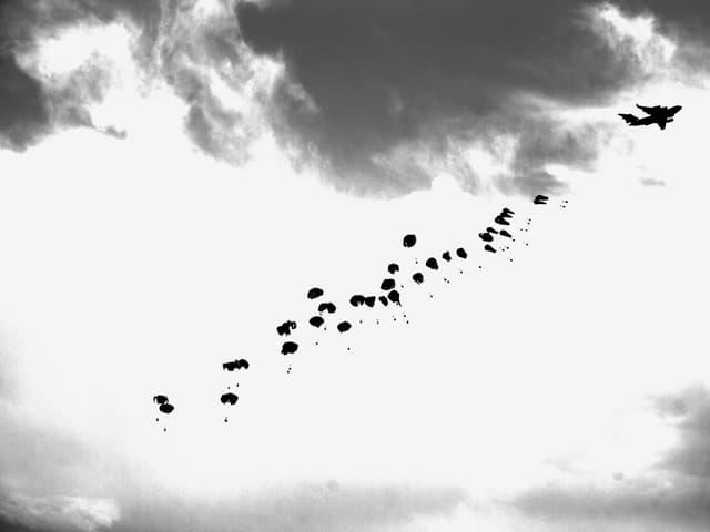 Fast 40 Fallschirme, aufgereiht am Himmel, vorne ein Flugzeug (schwarz-weiss).
