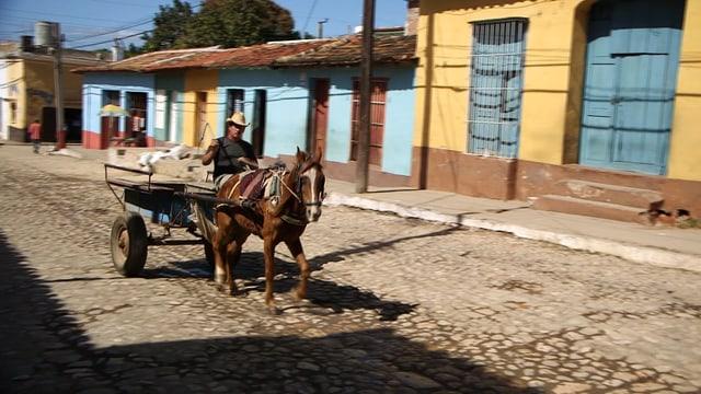 Pferd, das einen Wagen in einer kubanischen Strasse zieht.