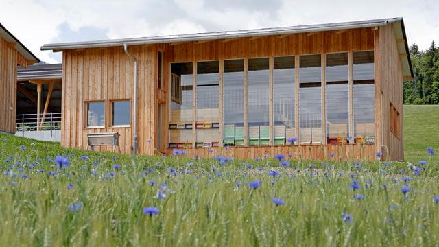 Bienenhaus von aussen. Es ist aus Holz, mit einer grossen Fensterfront.