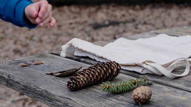 Naturmaterialien und Kinderhand