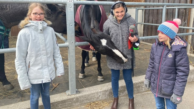 Mädchen und Reporterin auf dem Bauernhof mit Pferden