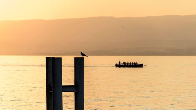 Sommer am Genfersee: Im Hintergrund ein Boot mit Ruderern, im Vordergrund sitzt ein Vogel auf einem Geländer.