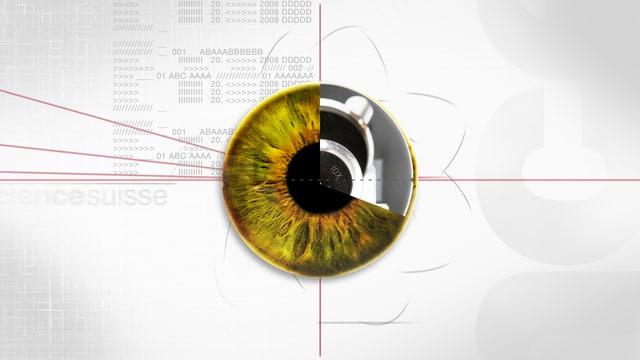 Ein Auge auf einem weissen Hintergrund - das Logo der Reihe SCIENCEsuisse