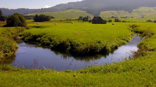 Blick über das Hochmoor von Rothenthurm.