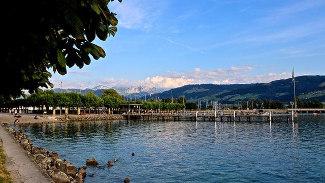Blick auf den Hafen von Rapperwil.