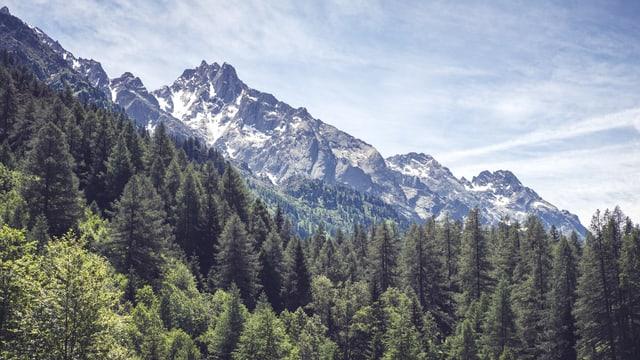 Las muntognas sur Casaccia