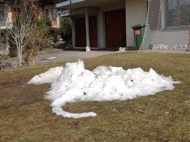 Schneereste auf Wiese