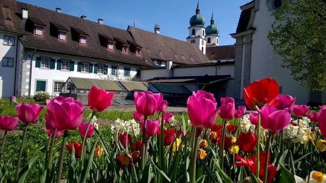Klosteranlage mit Blumen