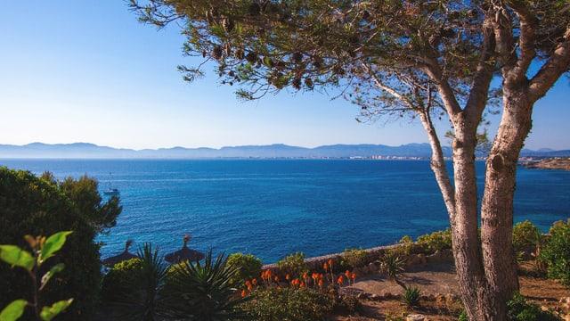 Garten mit Blick aufs Meer.
