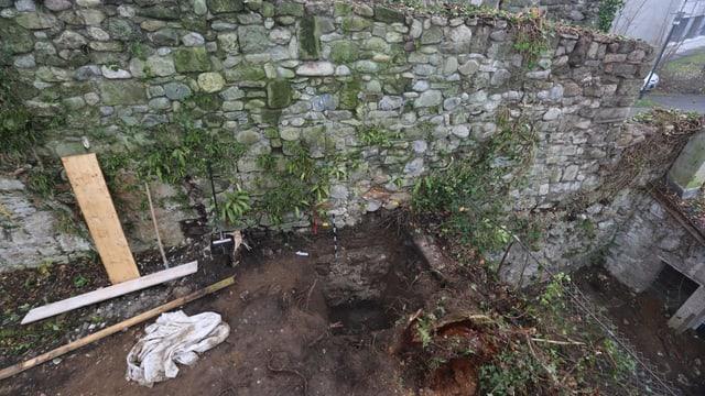 Eine Mauer mit Pflanzenbewuchs dran.