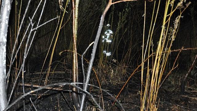 Ein Feuerwehrmann im abgebrannten Schilf
