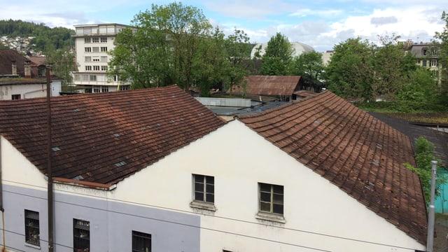 Ein braunes Hausdach. Im Hintergrund Bäume.