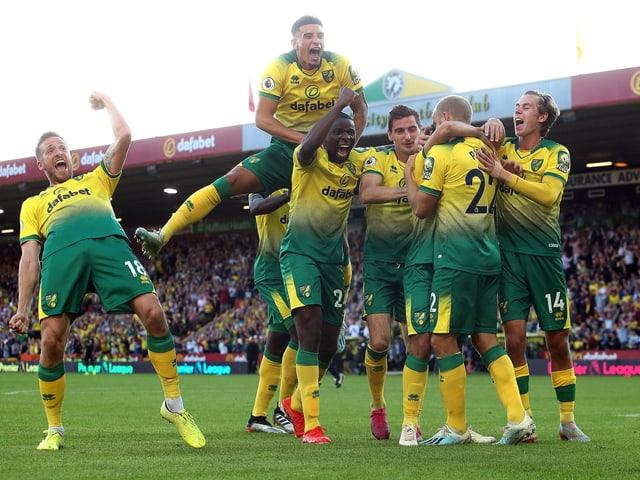 Die Norwich-Spieler sind aus dem Häuschen.