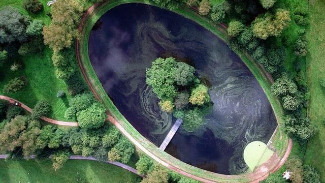Luftaufnahme eines Tümpels mit einer Insel.