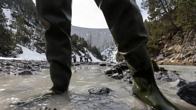 Fachleute inspizieren den Fluss Spöl im Nationalpark.
