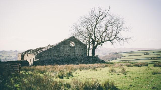 Die Ruine eines Hauses zwischen Feldern.