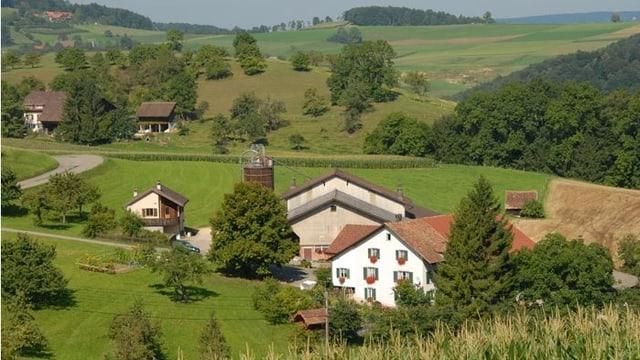 Bauernhäuser im Grünen.