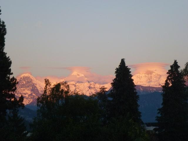Im Vordergrund Bäume, im Hintergrund die Berner Alpen mit Linsenwolken.