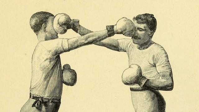 Ein Bild mit zwei Boxern.