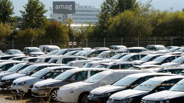 Autos von VW bei Amag