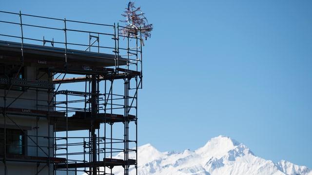 Die Kantone Waadt, Bern, Wallis, Graubünden und Tessin bauten zu eifrig