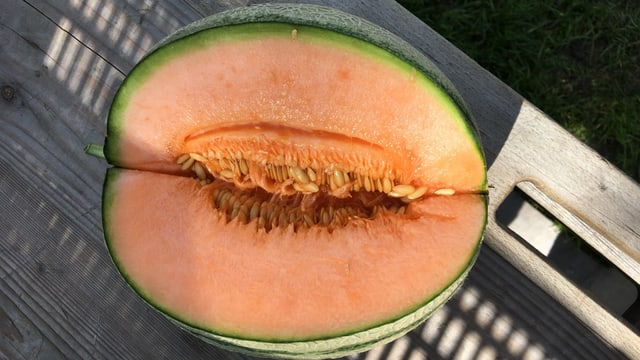 Ina melona da Charentais.