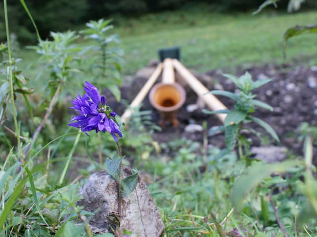 Alphorn liegt in einem Blumenbett