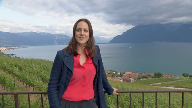 Video «Kulturplatz extra: Sommerprogramm mit Nina Mavis Brunner» abspielen