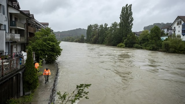 Reuss führt bei Mellingen Hochwasser.