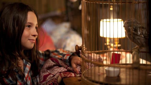 Ein Mädchen schaut einen Kauz an, der in einem Käfig sitzt.