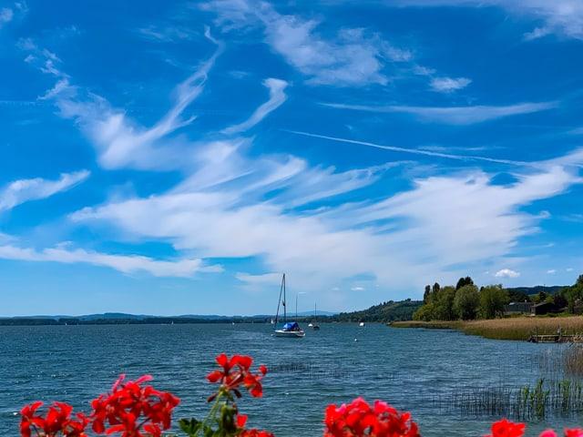 Der Himmel über einem See ist zum Teil von Eiskristalwolken( Cirren) überzogen.