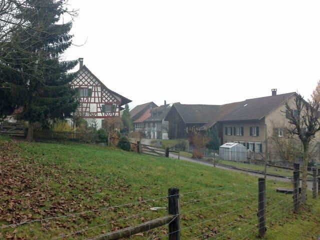 Hübschers Hof, ein stattliches Riegelhaus, liegt gleich beim Ortseingang mit einer grossen Wiese davor.