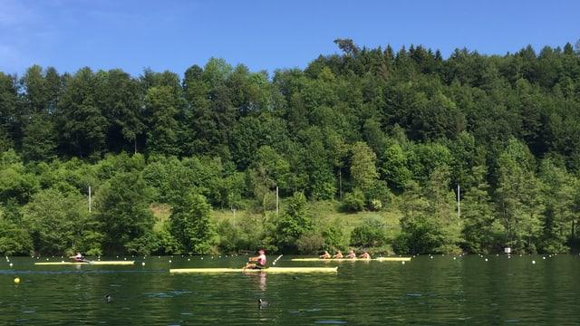 Bild von drei Booten auf dem Rotsee