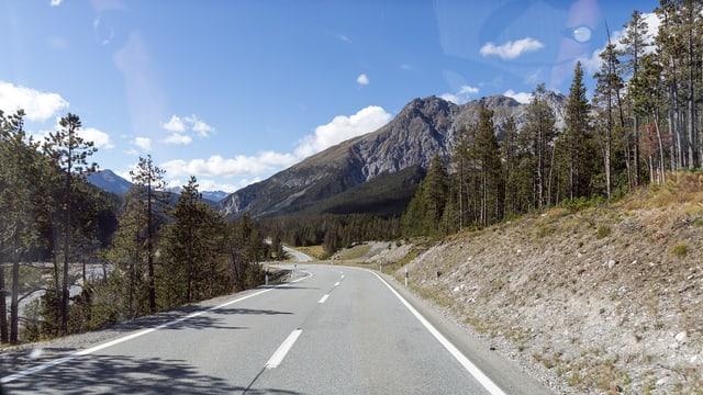 La via sur il pass dal Fuorn maina amez tras il Parc Naziunal Svizzer.