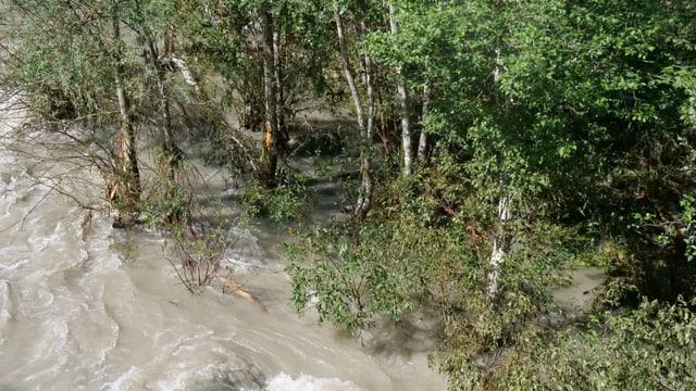 Blick auf die überschwemmten Auen von oben.