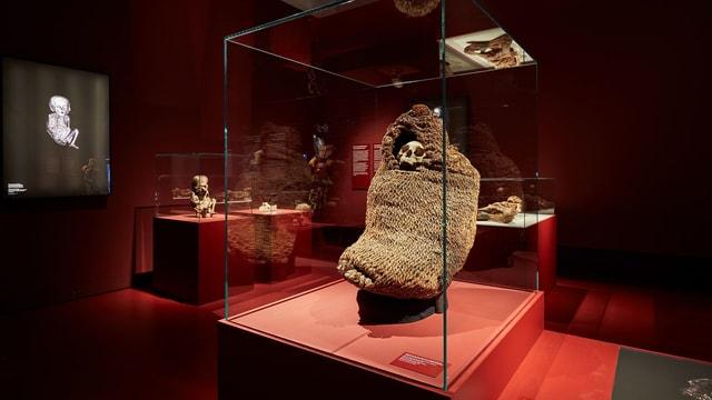 Blick in die Ausstellung - mit Mumien aus Südamerika.