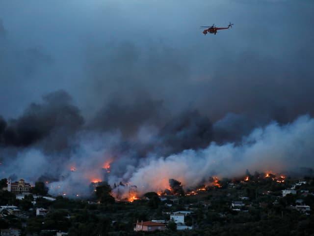 Bei extremer Trockenheit und starken Winden sind die Waldbrände nahe Athen ausser Kontrolle geraten.