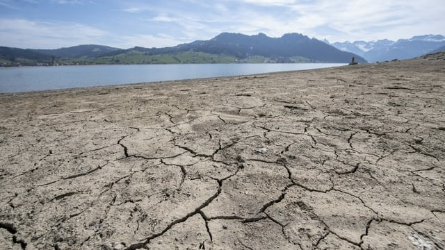 Ausgetrockneter Boden am Sihlsee